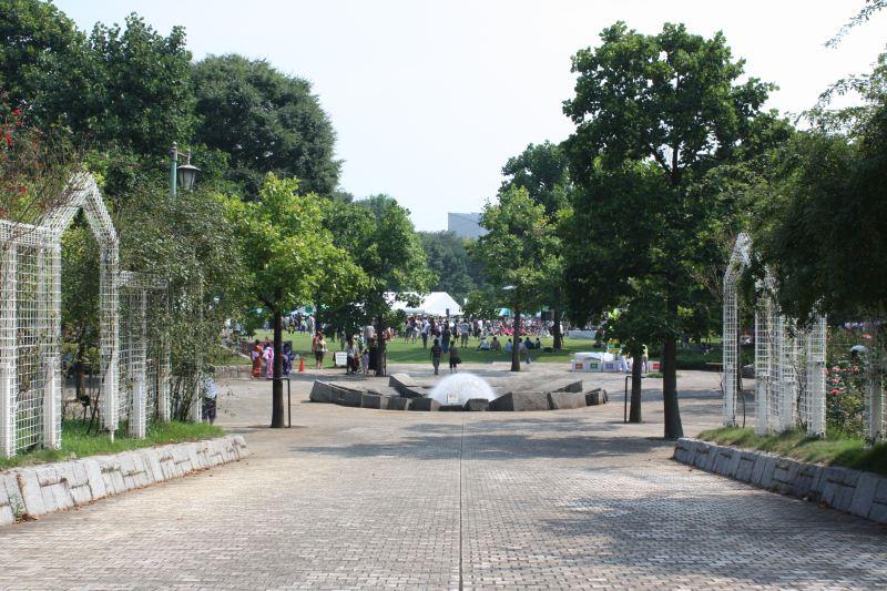 http://fujipark.com/chuuou/chuuou/image/IMG_6461.jpg