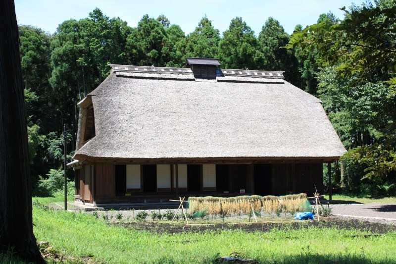 http://fujipark.com/hiromi/hiromi/image/IMG_6081.jpg