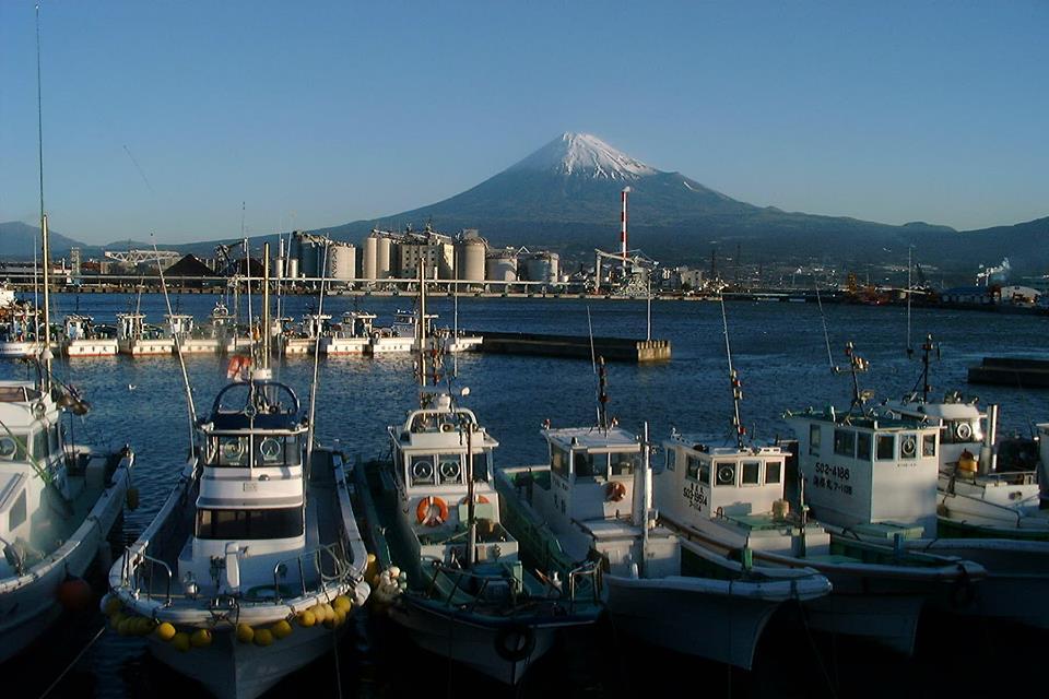 田子の浦と富士山