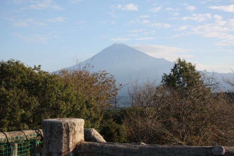 http://fujipark.com/iwamoto/images/IMG_6990.jpg