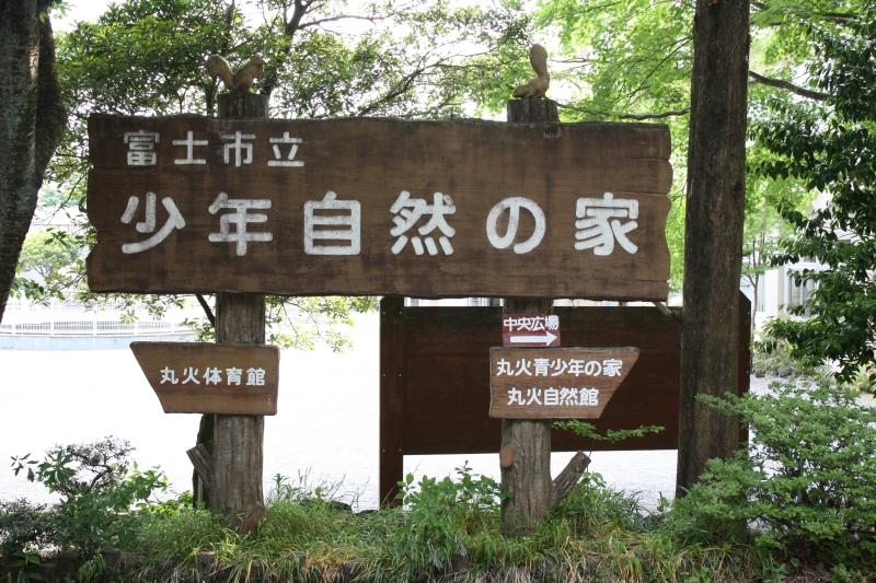 http://fujipark.com/marubi/marubi/image/IMG_5779.jpg