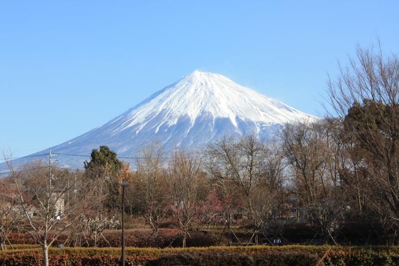 http://fujipark.com/nishi/images/sIMG_7285.jpg