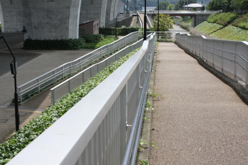 http://fujipark.com/nishi/nishi/images/IMG_5916.jpg