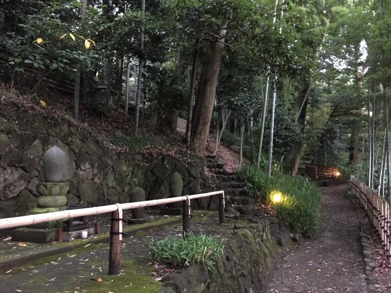 http://fujipark.com/taketori/IMG_2284.jpg